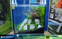 05aquascaping