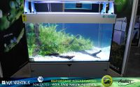09aquascaping